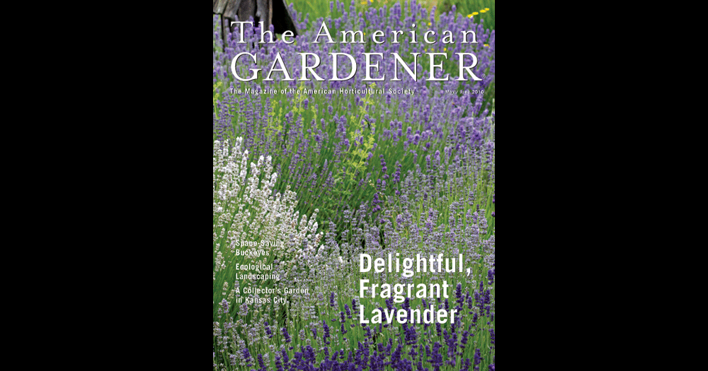 The American Gardener cover May-June 2010